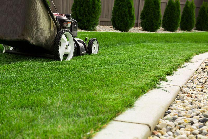 offerta manutenzione aree verdi occasione taglio erba occasione manutenzione prato vicenza