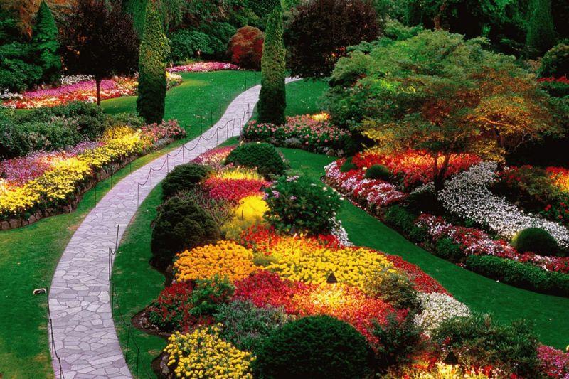 offerta progettazione aiuole e viali occasione realizzazione giardini vicenza