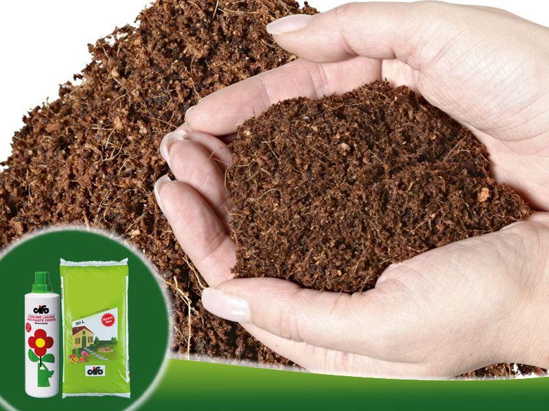 promozione concime fiori cifo codogne promozione terriccio cifo codogne agriverde