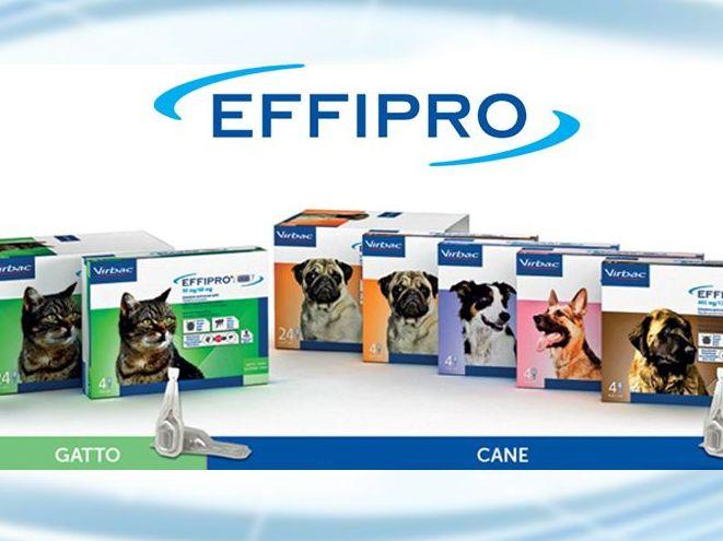 offerta antiparassitario effipro promozione antiparassitario cani e gatti effipro agriverde