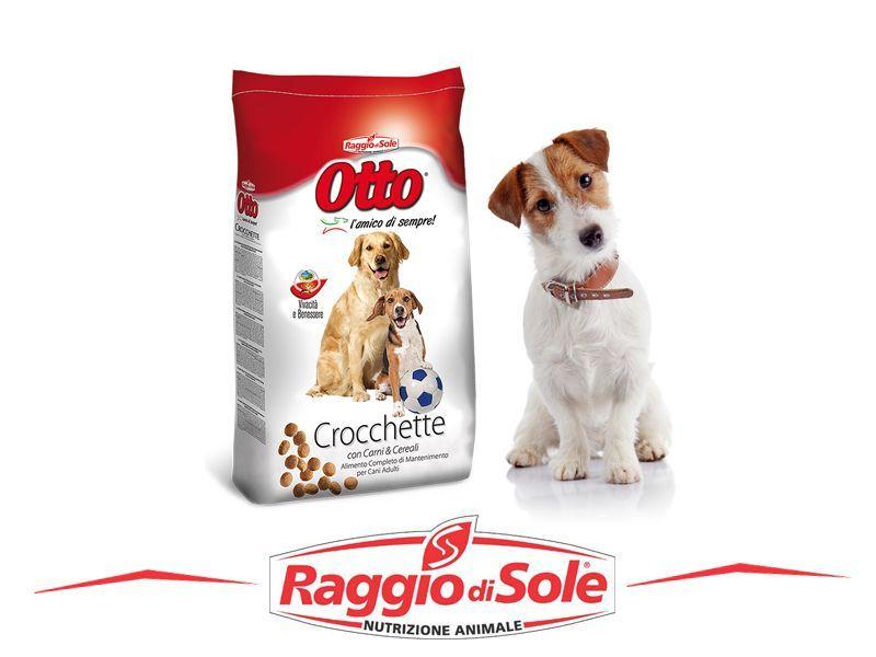 offerta vendita crocchette cani promozione vendita crocchette raggio di sole agriverde