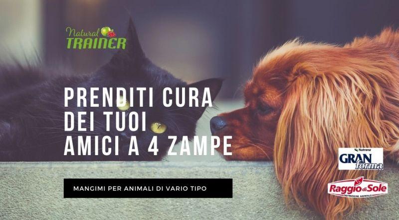 OCCASIONE mangimi per animali natural trainer, raggio di sole, gran forma a Treviso – vendita mangimi naturali per animali