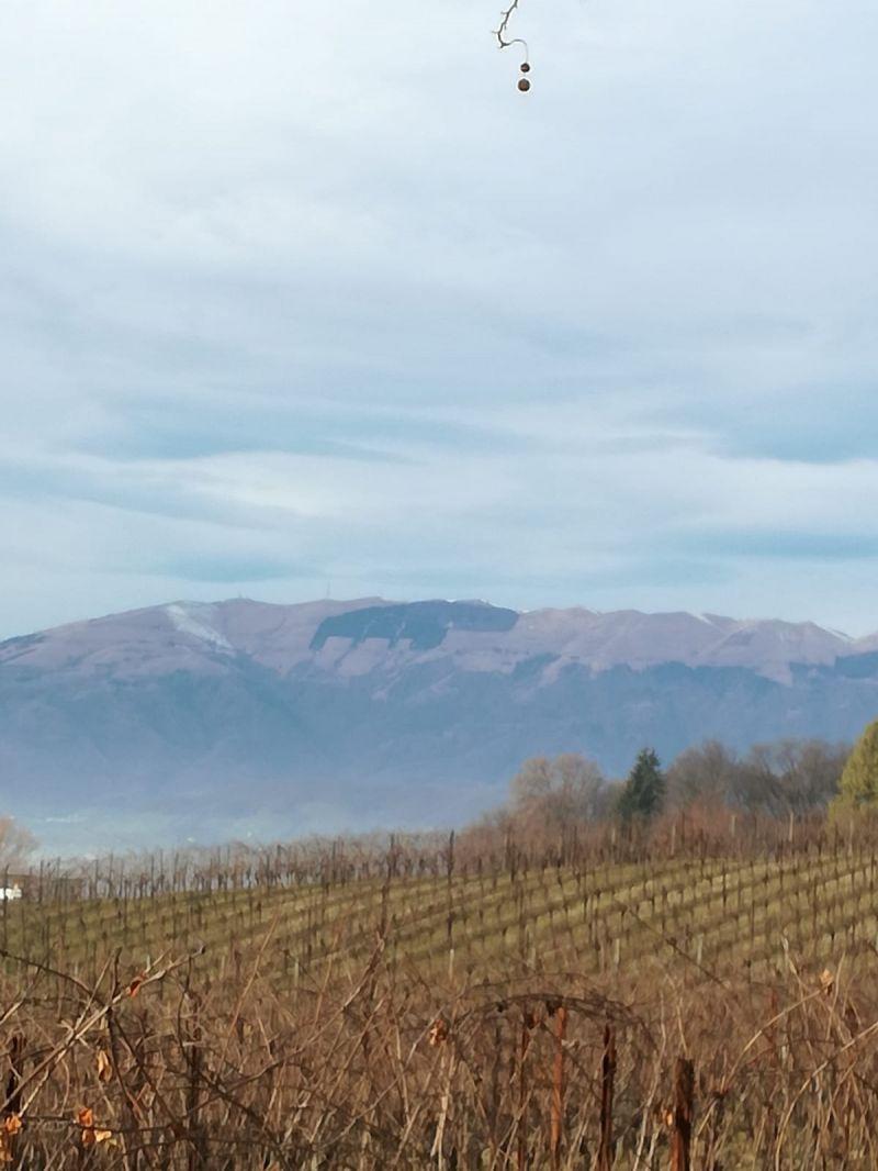 Alla scoperta dei panorami da Susegana verso San Daniele, Colle della tombola e Collalto