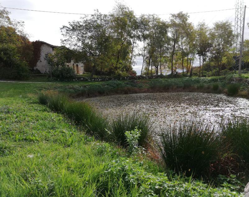 Offerta escursione Nordic Walking a Cordignano lungo il sentiero del Patriarca a Treviso