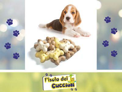 offerta biscotti per cani sfusi narni promozione snack biscotti per cani isola dei cuccioli