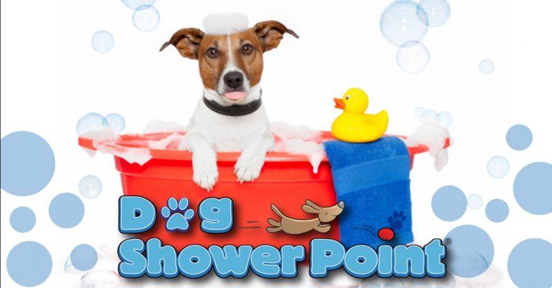 offerta servizio lavaggio animali self service Terni - occasione lavaggio cane fai da te Terni