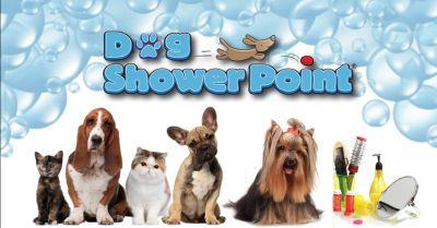 offerta pulizia professionale animali terni occasione servizio toelettatura per cani gatti