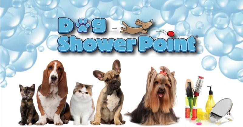 offerta pulizia professionale animali Terni - occasione servizio toelettatura per cani gatti