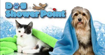 offerta servizio tosatura professionale cani occasione toelettatura per animali centro terni