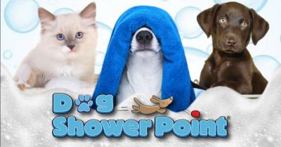 dog shower point offerta toelettatura self service terni occasione lavaggio cani self service terni