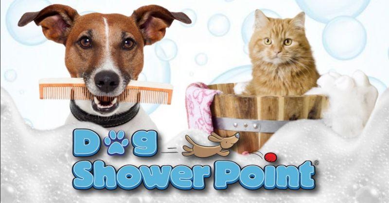 Promozione lavaggio cani fai da te Terni - Occasione servizio toeletta self service Terni