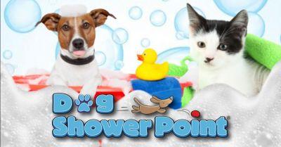 offerta toelettatura professionale cani gatti terni occasione toelettatura con operatore specializzato terni