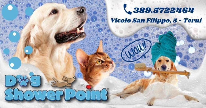 Offerta lavaggio self service per cani Terni - Occasione toelettatura cani fai da te Terni