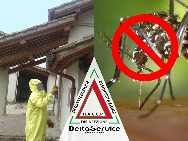 offerta derattizzazione disinfestazione sanificazione promozione disinfezione delta service