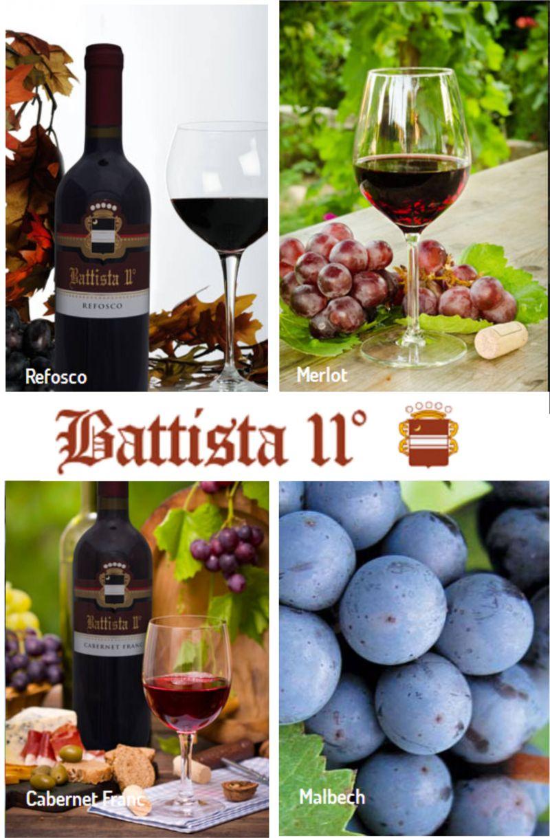 Offerta vendita vino sfuso provincia di Udine - Occasione vino sfuso UD