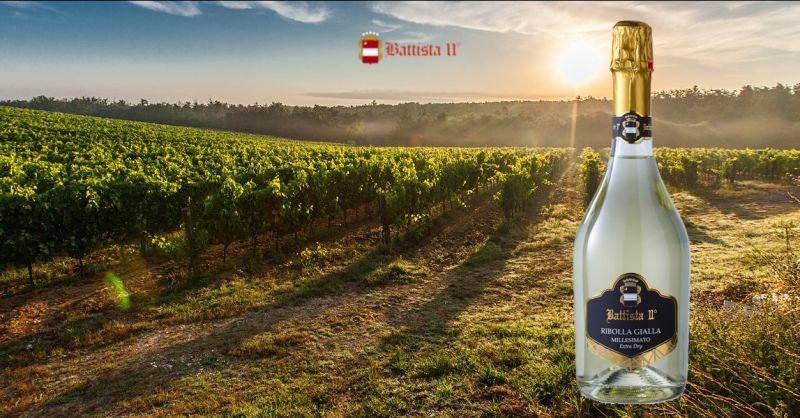Offerta vendita spumanti Udine - Occasione produzione e vendita Ribolla Gialla Udine