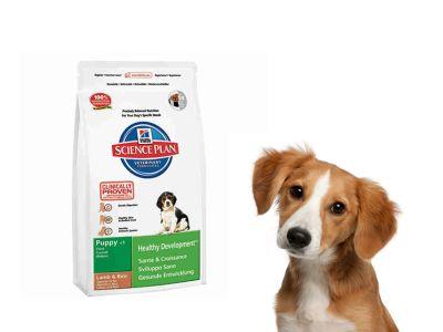 promozione offerta occasione hills crocchette puppy adult 12kg cosenza