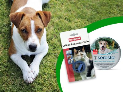 offerta collari antipulci cani gatti promozione collari antiparassitari cani gatti pet shop