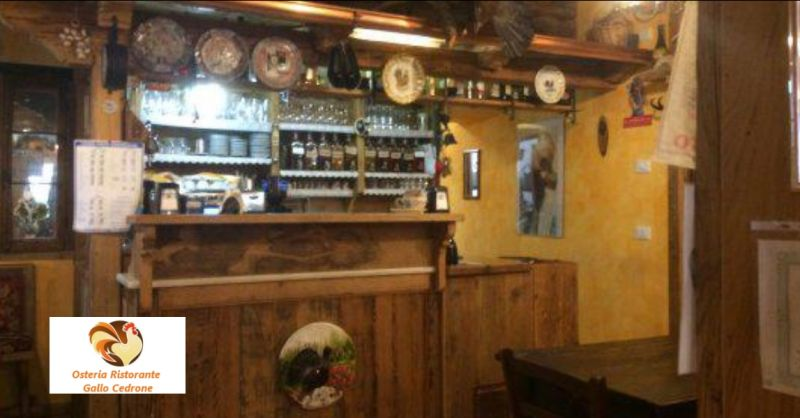 Osteria Gallo Cedrone offerta piatti tipici della zona - occasione cibo genuino Erto e Casso