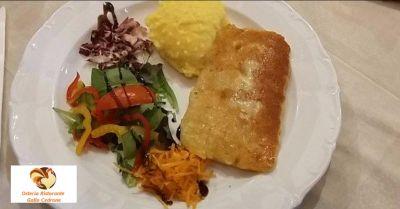 osteria ristorante gallo cedrone occasione cibo genuino offerta piatti tipici pordenone