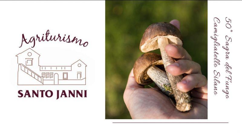 Agriturismo santojanni pomozione weekend in sila - offerta sagra del fungo camigliatello
