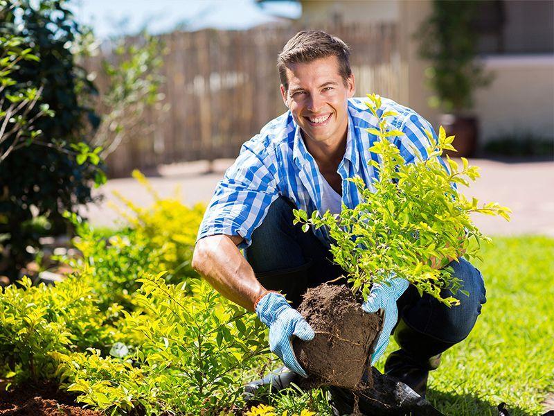 offerta articoli per giardinaggio vicenza promozione forniture e prodotti per agricoltura bio