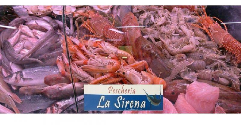 PESCHERIA LA SIRENA - promozione vendita pesce allingrosso fresco e surgelato