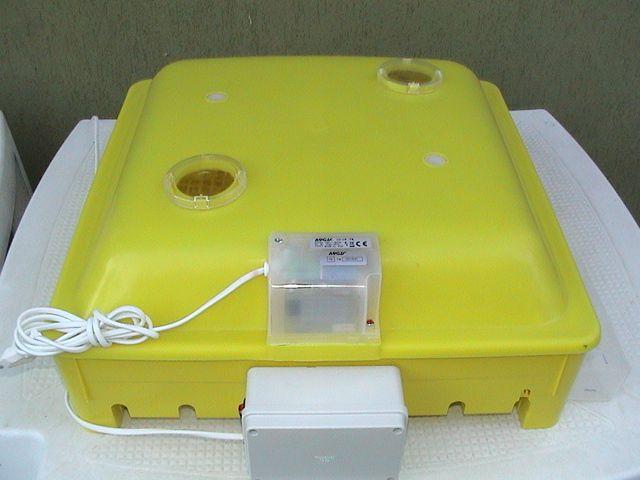 incubatrice automatica 56 uova con igrometro
