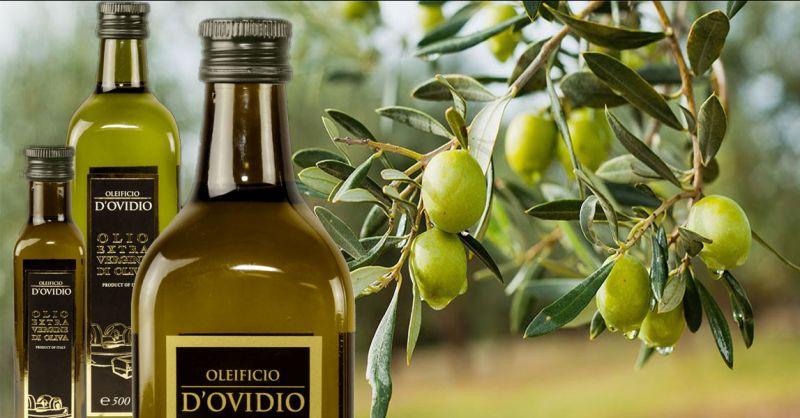 Oleificio D'Ovidio Promotion Herstellung von extra nativem Olivenöl  Made in Italy Abruzzen