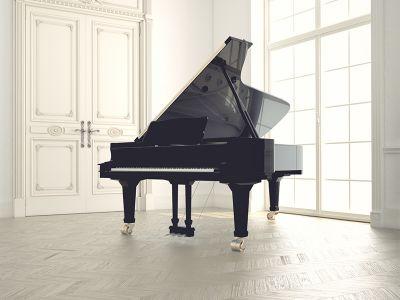 offerta pianoforte mezza coda horugel pianoforte usato horugel acoustic piano