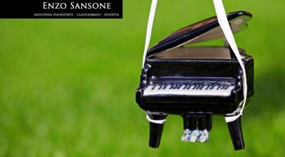 promozione trasloco pianoforte cosenza offerta trasporto pianoforte castrolibero