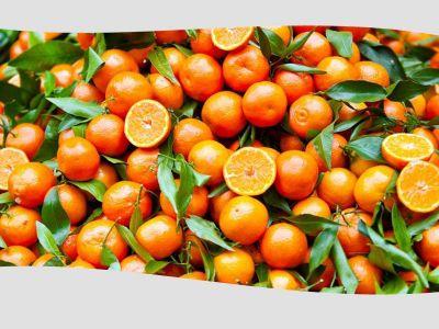 promozione clementine offerta occasione agrumi
