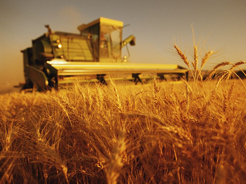 Attrezzature Agricole e Meccaniche - Ilaf Srl