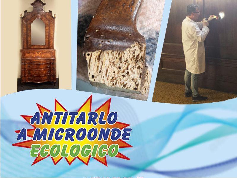Offerta trattamento antitarlo - Promozione servizio antitarlo - Arte Veneta