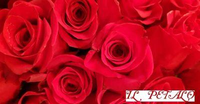 offerta regali di san valentino siena promozione di san valentino siena