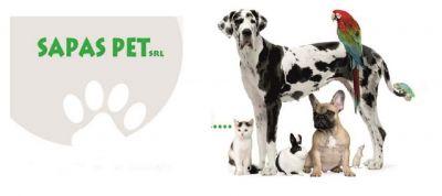 promozione negozio di prodotti e accessori per animali arezzo sapas pet