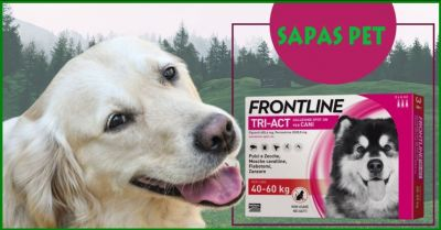 sapas pet offerta vendita antiparassitari e antipulci per cani a prezzi scontati