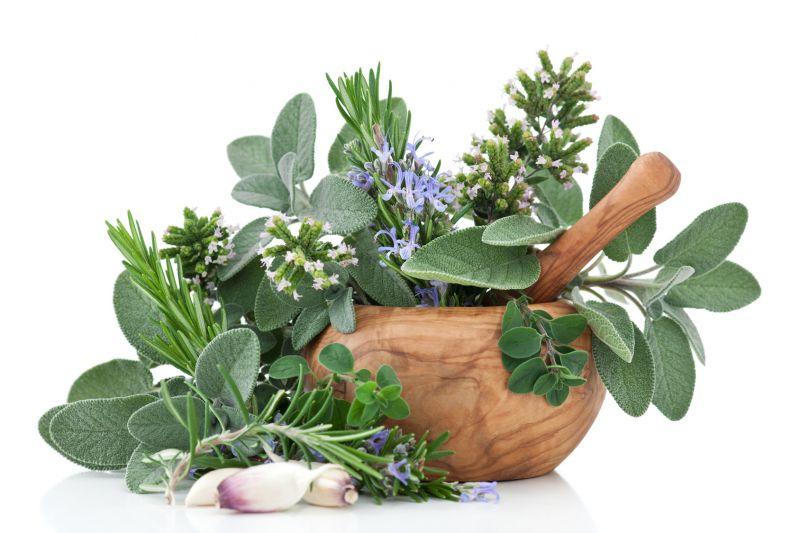 cure naturali erboristeria monteverdi