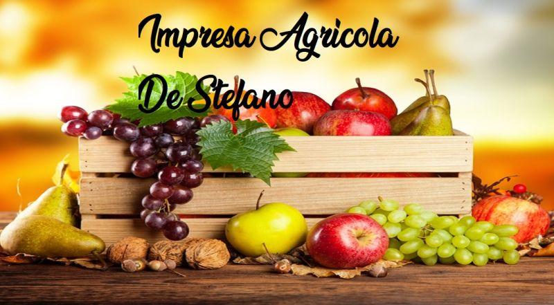 IMPRESA AGRICOLA DE STEFANO offerta frutta biologica - occasione verdura Napoli