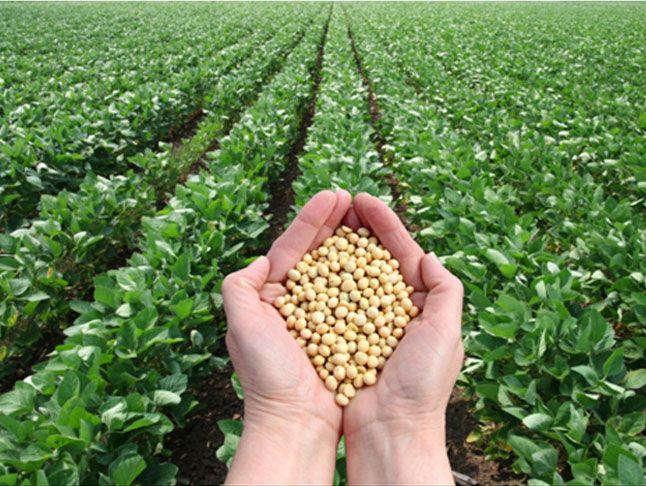 offerta prodotti a residuo zero promozione prodotti biologici verona cda punto verde srl