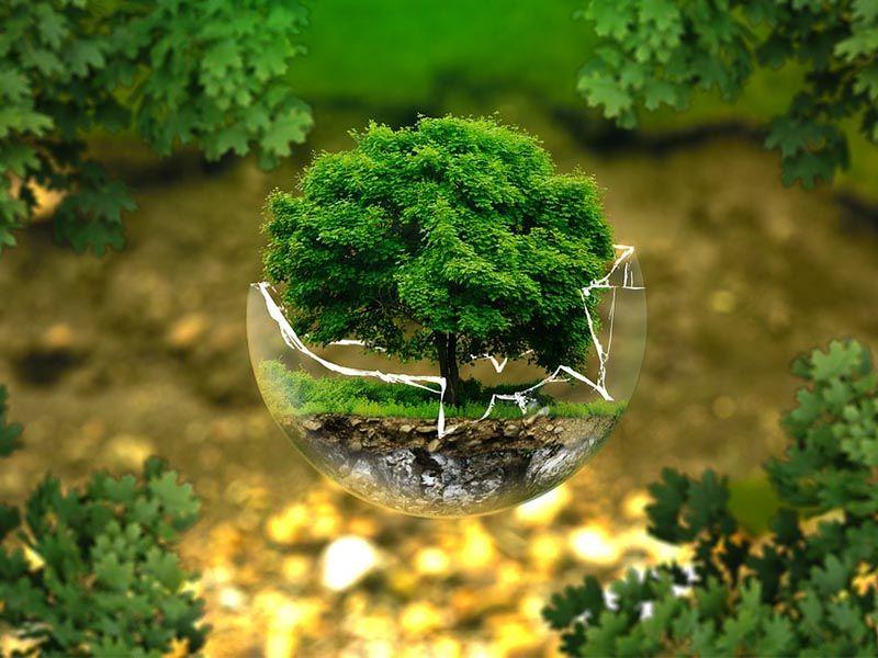 consulenza ambientale brescia