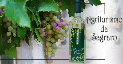 offerta produzione vino bianco olivi bianco frizzante vicenza occasione vino da uvetai bianco e pinot