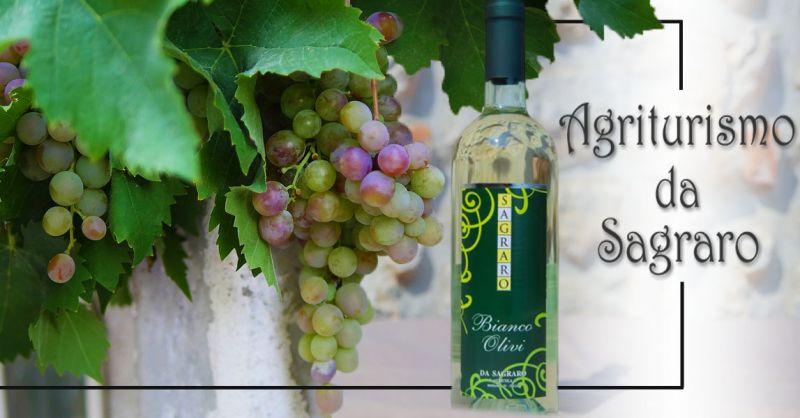 Offerta Produzione Vino Bianco Olivi Bianco Frizzante Vicenza - Occasione Vino da uveTai Bianco e Pinot