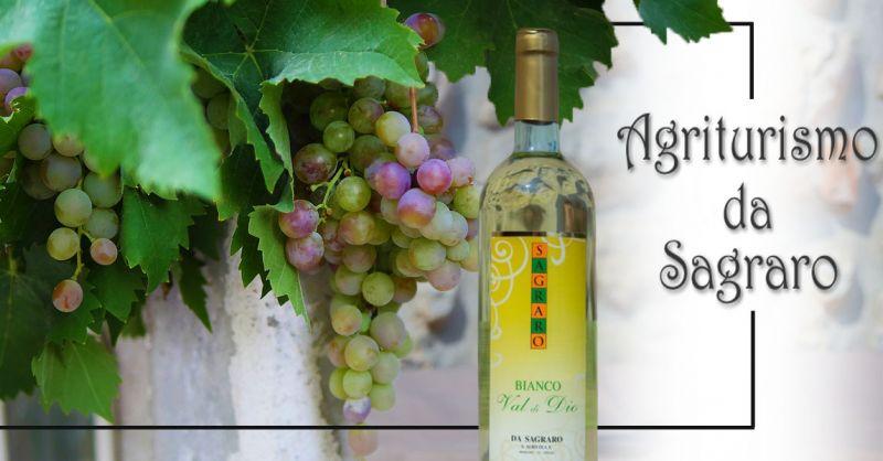 Offerta Produzione MOSCATO BIANCO FRIZZANTE Vicenza - Occasione Vendita Vino Dolce Moscato Vicenza