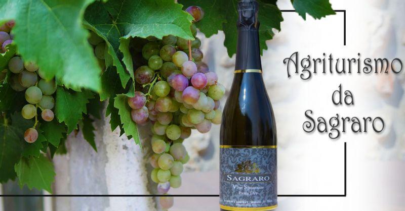 Offerta Produzione SPUMANTE EXTRA DRY Vicenza - Occasione Ventita Vino Prosecco Spumante Vicenza