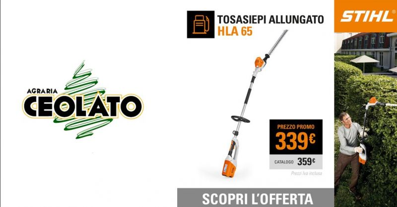 Offerta Vendita STIHL HLA 65 tagliasiepi Vicenza - Occasione Tagliasiepe allungabil a batteria