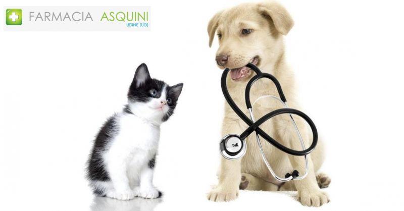 Farmacia Asquindi occasione vendita prodotti per animali - offerta antiparassiti e alimenti