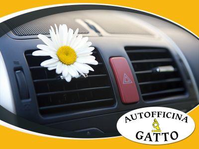 offerta ricarica aria condizionata auto promozione igienizzazione autofficina gatto andrea