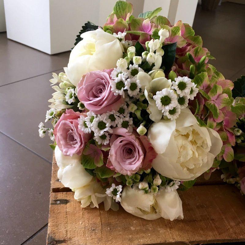 offerta bulbi occasione fiori freschi recisi promozione piante per interni ed esterni vicenza