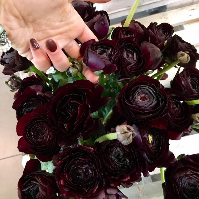 offerta decorazioni floreali cerimonie occasione allestimenti eventi fiori recisi vicenza